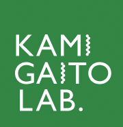 KAMI GAITO LAB. Department of Molecular and Macromolecular Chemistry